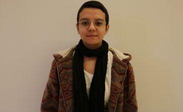 Sophia Rodrigues Silva